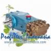 Cat Pump 2537 profilterindonesia pix  medium